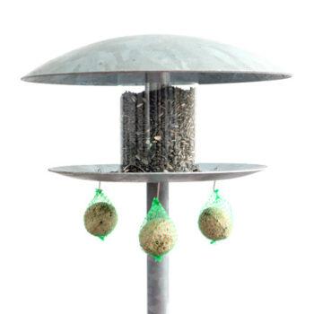 Fuglehus og foderkugler